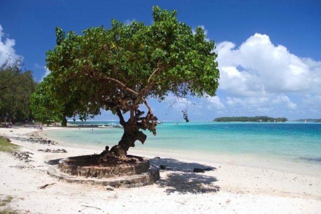 Travel Agents Envisage a Return to International Travel