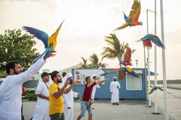 Ajman Tourism hosts a live parrot show