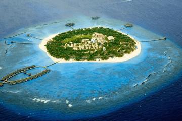 UFC private island