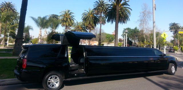 dubai limo tour
