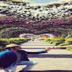 Dubai-Miracle-Garden-Proposal