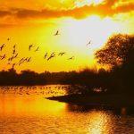 sunset at Dubai Love Lake