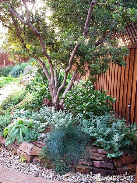 Backyard Outdoor Living Spaces