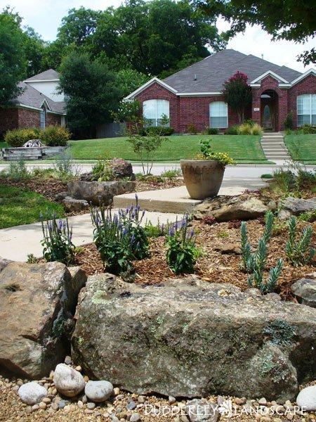 Pond Landscaping Plants