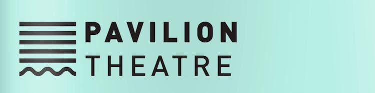 pavilion theatre in dun laoghaire