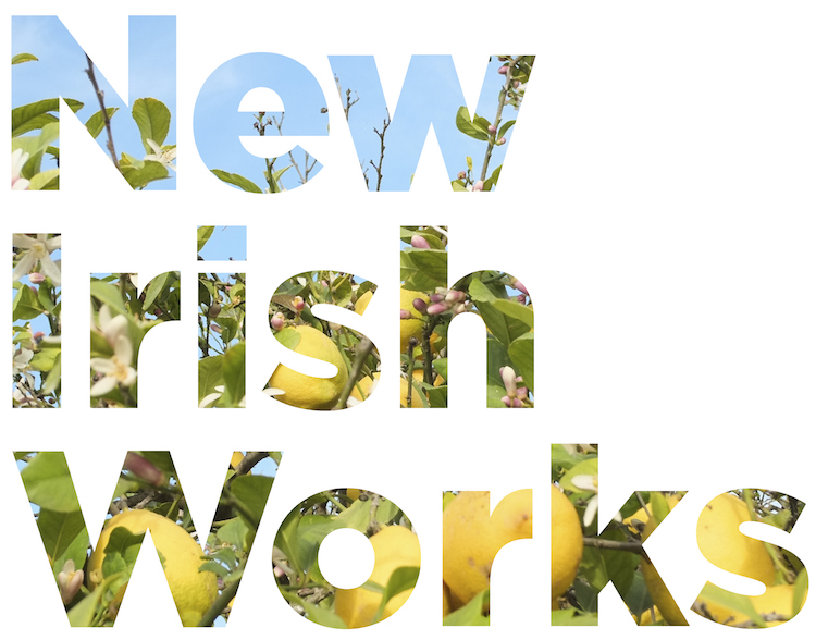 New Irish Works logo