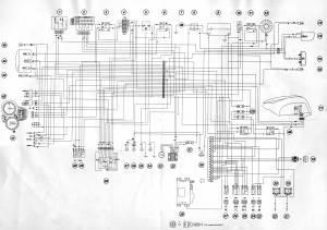 ST4 wiring diagram  Ducatims  The Ultimate Ducati Forum