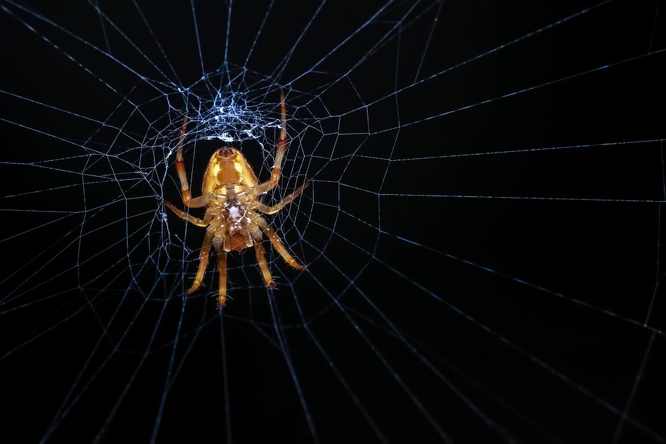 Kill Webs: The Wicked Problem of Future Warfighting