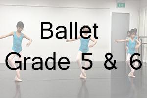AIM Ballet Grade 5 & 6