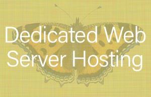 Dedicated Web Server Hosting