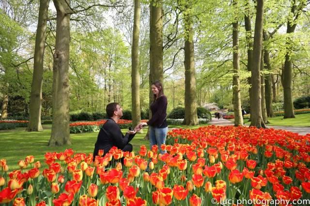 Ensaio fotográfico nos campos de flores em Kukenhof