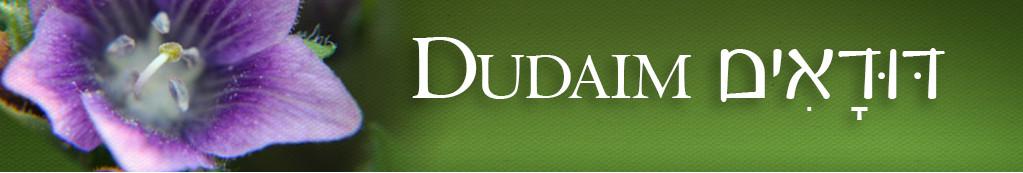 Image result for dudaim