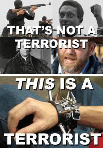 "Alternate description of ""terrorist"""
