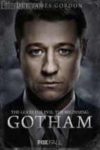 Gotham hiatus