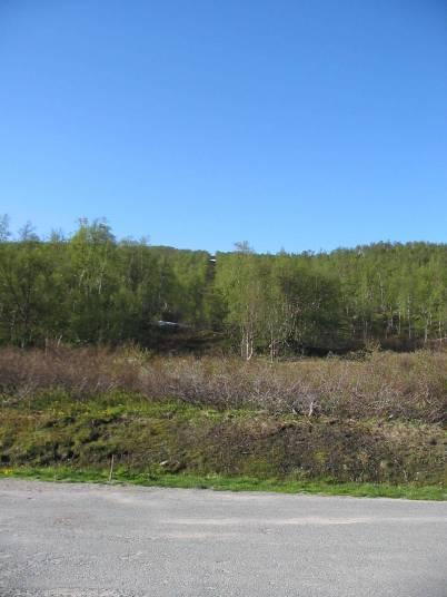 Zomervakantie 2007 - Scandinavië 146