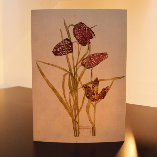 Charles Rennie Mackintosh - Fritillaria