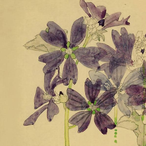 Detail - Purple Mallows, Holy Island. Charles Rennie Mackintosh.