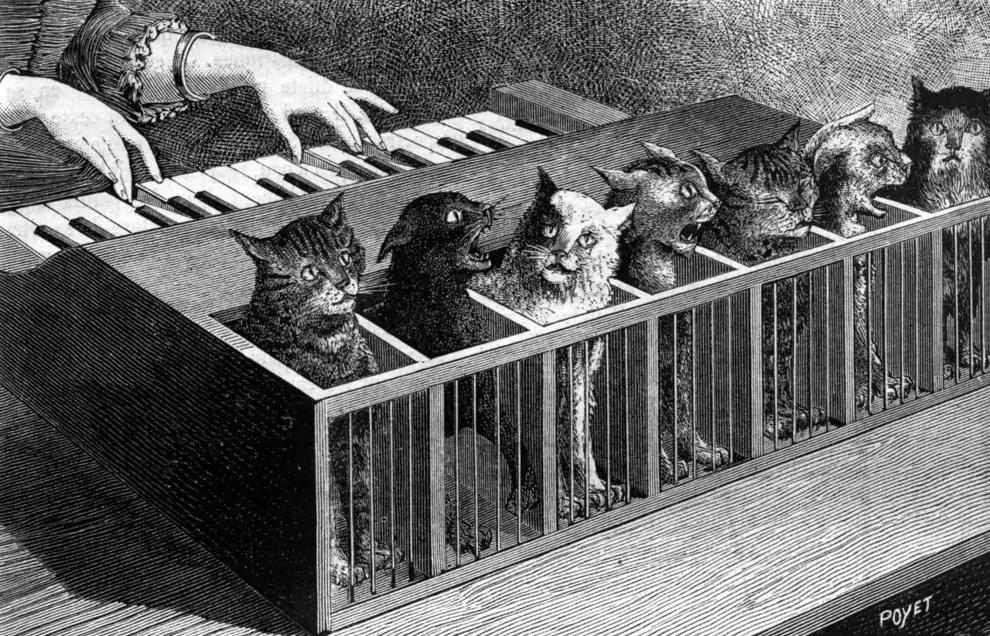 Het kattenorgel, een pijnlijk instrument