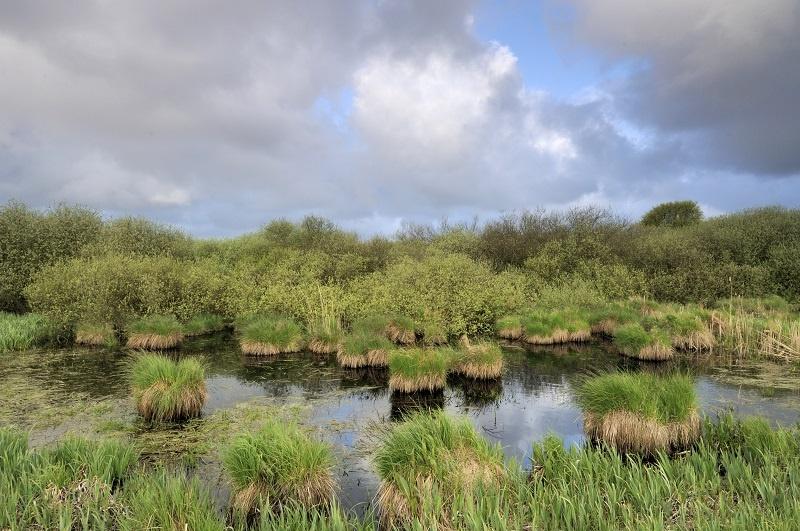 Zwanenwater is Nederland in het klein