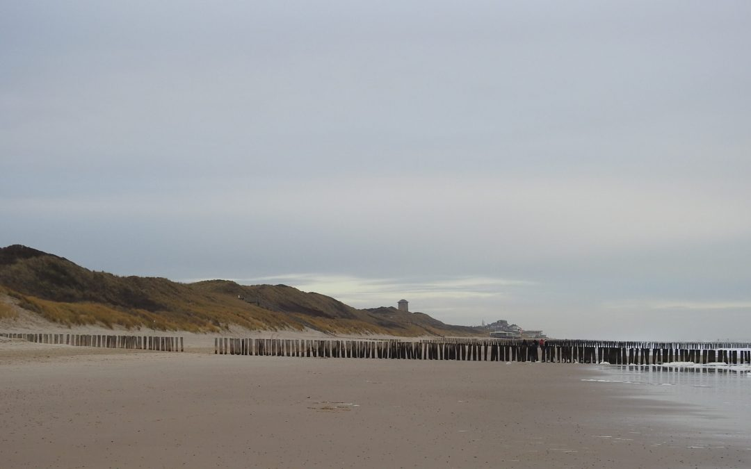 Duin, bos en strand: de zeewering aan de Domburgse kust Zeeland: 16 september, 16.00 tot 17.30