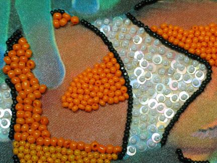 clownfish2-closeup
