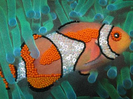 clownfish2