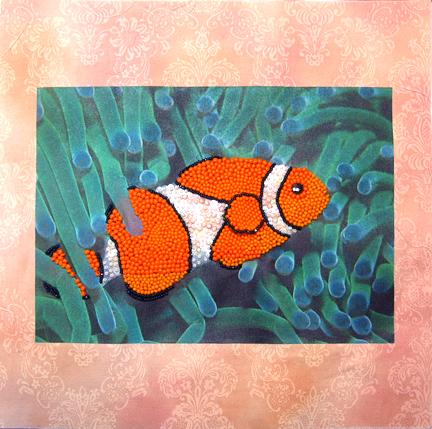 clownfish5