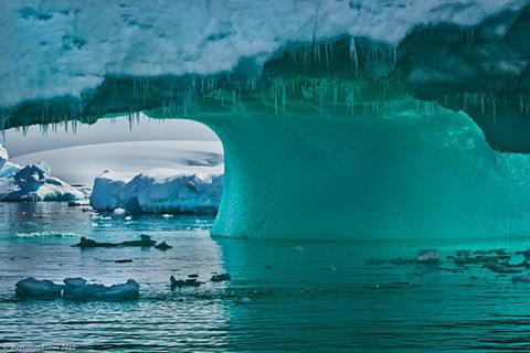 Ít hơn 1% dân số thế giớ từng du lịch tới Antarctica.