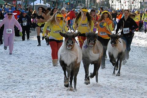 Lễ hội tuần lộc Fur Rendezvous, Alaska