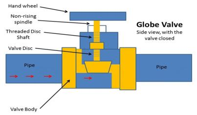 Globe Valve Side View Cutaway