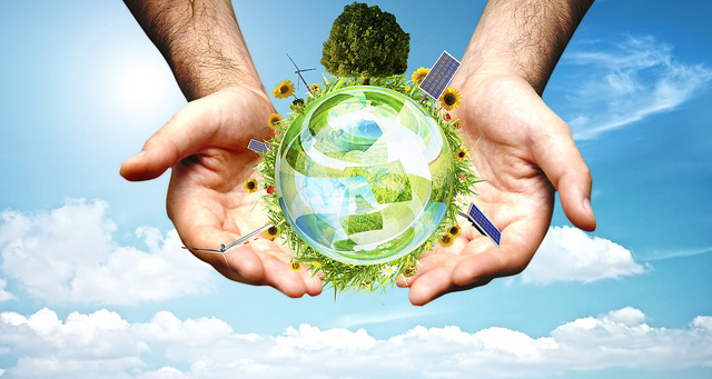 How Your Business Can Save The Environment