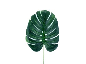 HOJA MONSTERA
