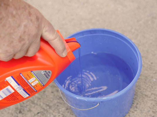 how to clean mildew from concrete dummies