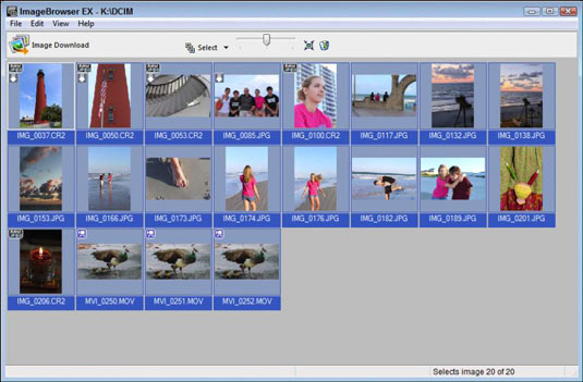 How to Download Images with Canon ImageBrowser EX - dummies