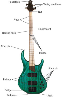 What Are the Parts of a Bass Guitar?  dummies