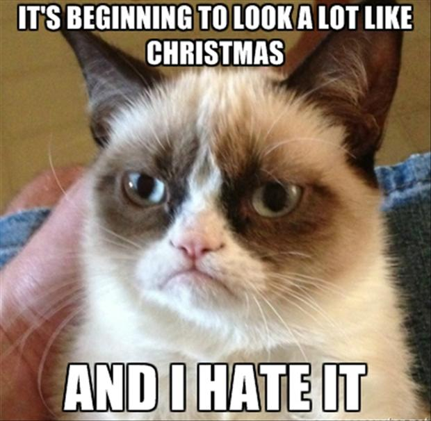 https://i1.wp.com/www.dumpaday.com/wp-content/uploads/2012/12/grumpy-cat-its-beginning-to-look-a-lot-like-christmas.jpg