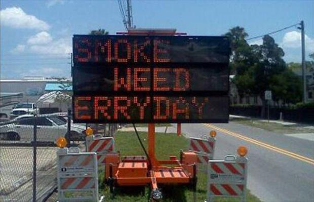 funny road signs (11)