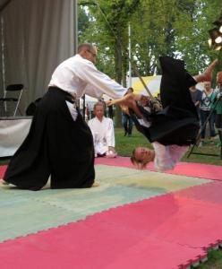 Aikido - Bart Verheggen 2