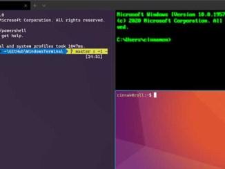 Ripristinare il terminale windows alle impostazioni di default su windows 10