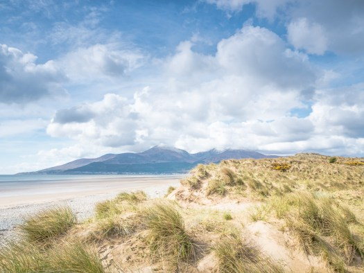 Mournes from Murlough