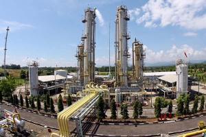 Kilang LNG Tangguh, Papua.
