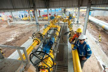 Penurunan Harga Gas Tingkatkan Utilisasi Industri Kaca