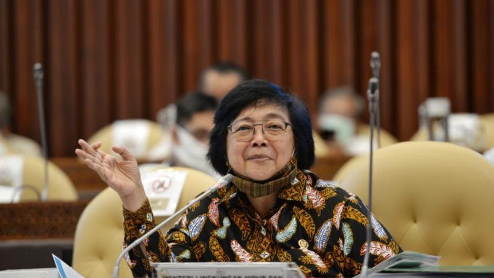 Menteri LHK Ingatkan Pemda, Pemetaan Wilayah Harus Sesuai Regulasi dan Standar Nasional