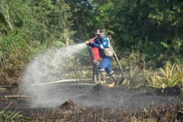 Cegah Karhutla, Refinery Unit II Pertamina Sinergi dengan Masyarakat