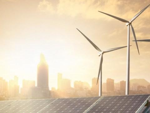 Upaya Inovatif Peluang Capai Netral Carbon