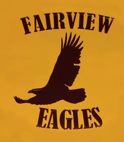 fairview testimonial