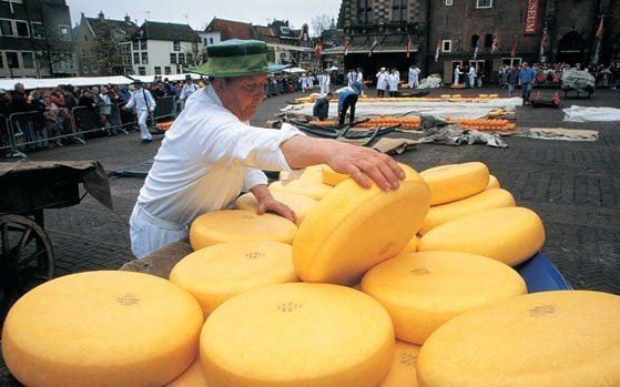 Hollanda peynir