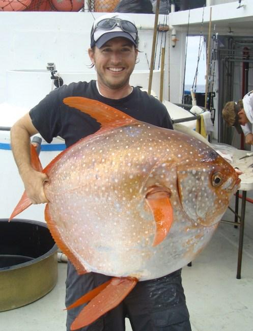 moonfish-4