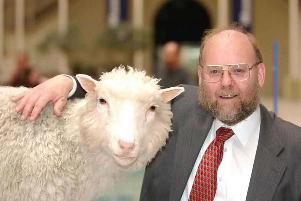 DNA denince akla ilk gelen canlı şüphesiz ilk klon koyun Dolly. Ne yazık ki kendisi bugünleri göremedi.