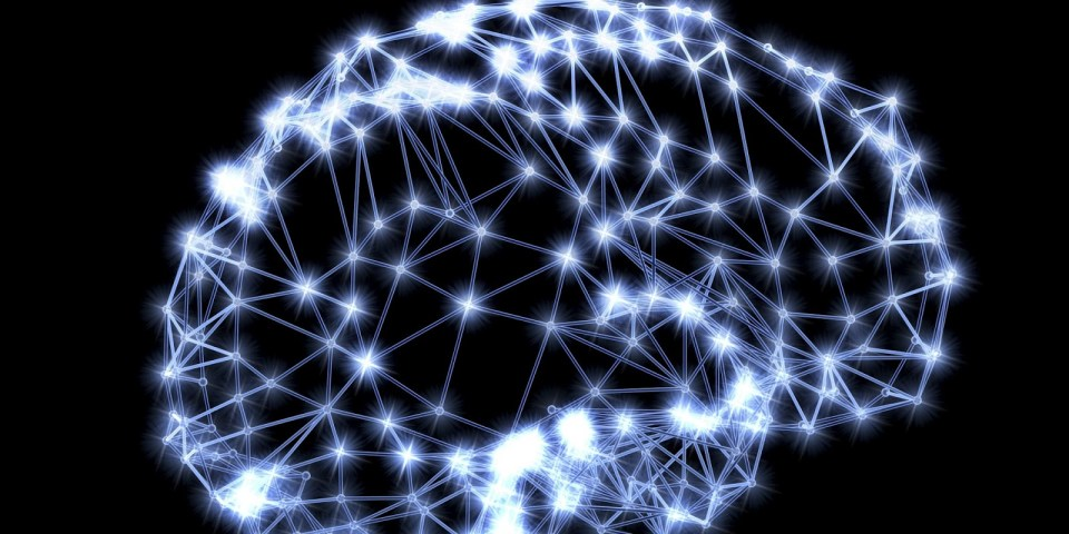 NetworkBrain